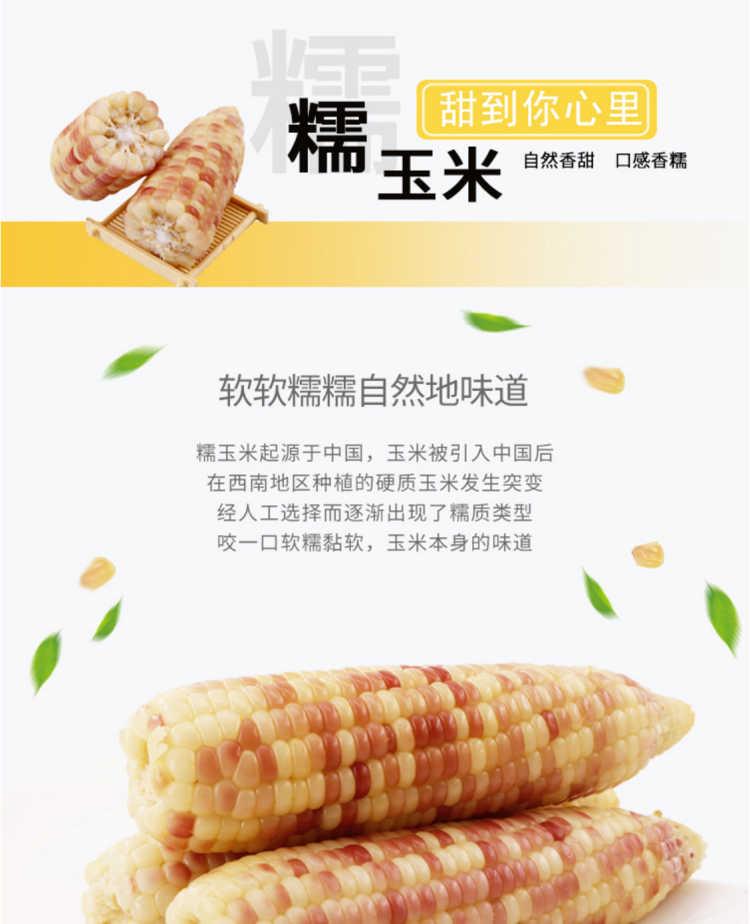 闪电发货}现摘新鲜甜糯玉米8斤10-14根粘黏玉米棒糯甜玉米3斤5斤
