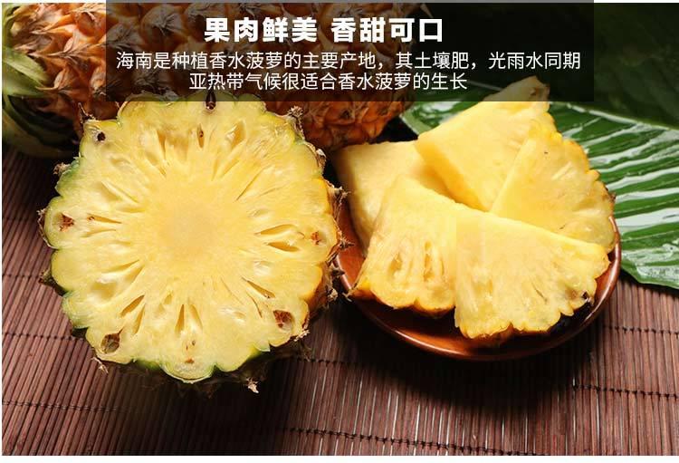 海南新鲜大菠萝10斤装/5斤/2个装手撕菠萝非凤梨水果