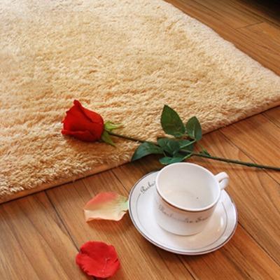 40*60CM柔细丝毛地垫脚垫门垫地毯可水洗地垫门垫客厅颜色随机