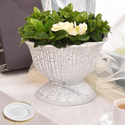 欧式圣杯款创意绿植陶瓷花盆室内盆栽摆件花盆绿萝陶瓷有孔花盆