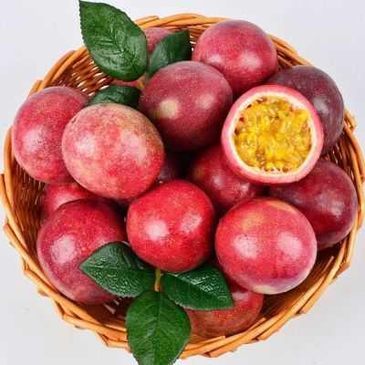 【送开果器】广西百香果大果2/3/5斤装(单果40-60克)新鲜水果12个